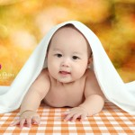 Bé Thiên Thần - Chụp ảnh bé yêu và tổ chức sự kiện ở Hải Phòng